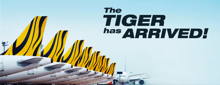 ve may bay tiger airways