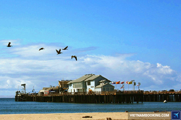 ve may bay Santa Barbara