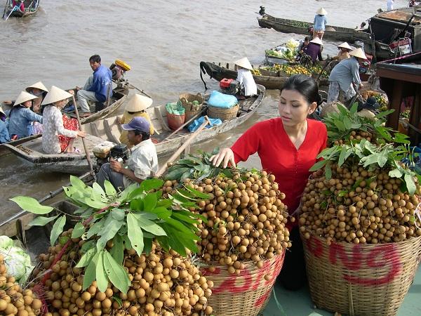 Vé máy bay từ Hà Nội đi Cần Thơ