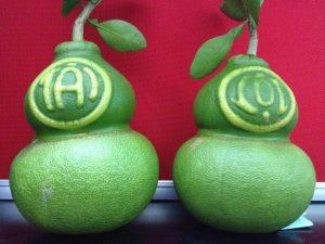 Những loại cây trái độc lạ để chưng ngày Tết