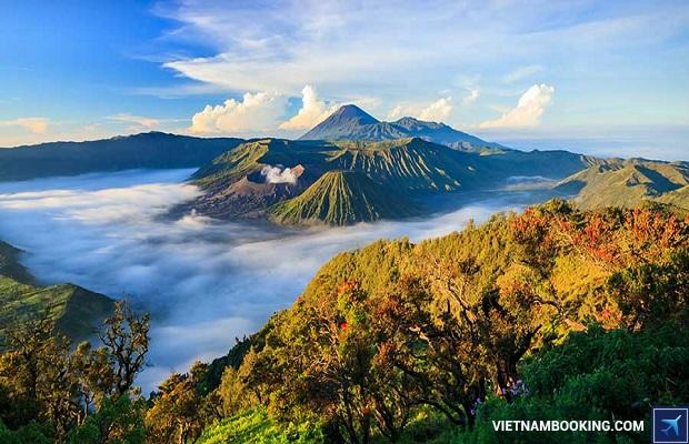 ve may bay di indonesia