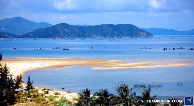 ve may bay di hai phong gia re