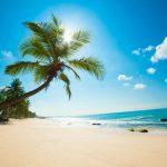 Hàm Ninh – Vinpearl Land – Vinpearl Safari – Bãi Sao – Câu Cá – Ngắm San Hô 3N2Đ
