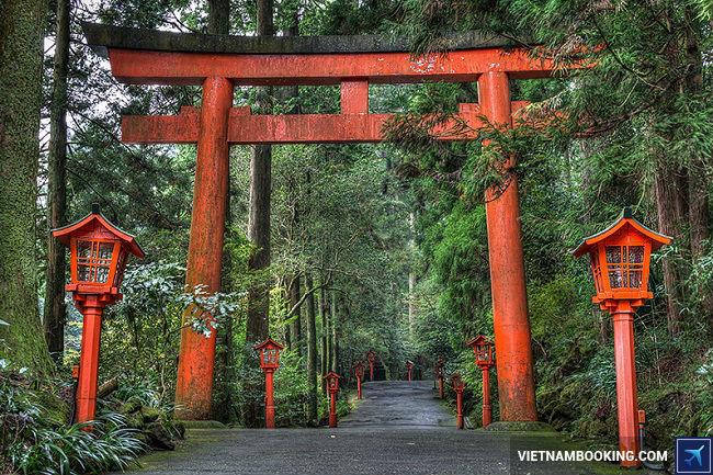 Tour du lịch Nhật Bản giá tốt