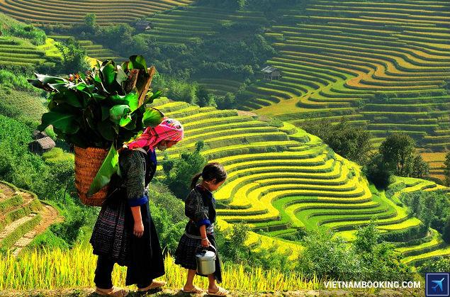 Mua tour du lịch TPHCM. Hà Nội, Lào Cai, Sapa