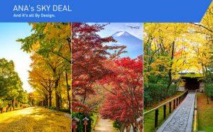ANA: Săn vé giá rẻ khám phá thu Nhật Bản