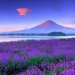 Du Lịch Nhật Bản Tết Đinh Dậu 2017 6N5D (Mùng 3 Tết)