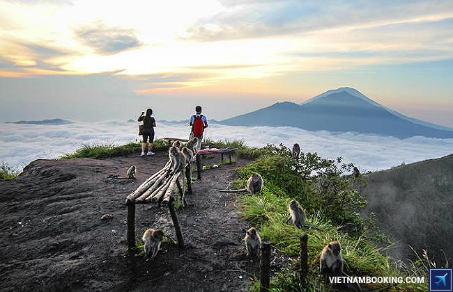 cẩm nang đi du lịch indonesia