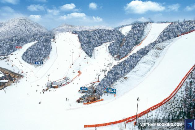 Tour du lịch Hàn Quốc: Seoul – Nami – Lotte World – Skiing 5N4Đ