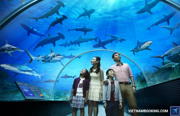 Tour du lịch Singapore 4n3đ giá ưu đãi