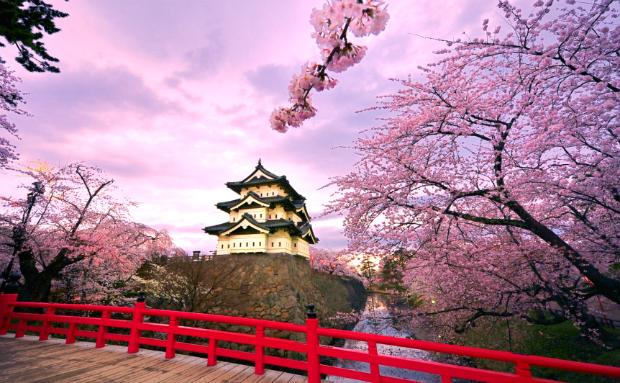 Tour du lịch Nhật Bản mùa anh đào: Osaka – Kyoto – Nagoya – núi Phú Sĩ – Tokyo giá rẻ