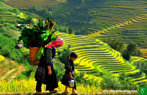 Visa-On-Arrival-Vietnam-2-21-3-2017