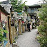 Ghé thăm Shizuoka xanh sạch đẹp nhấtở Nhật Bản