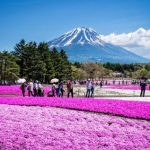 Hành trình trải nghiệm thú vị trêncung đường Shoryudo ở Nhật Bản