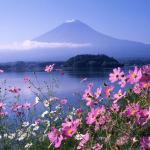 Du lịch Nhật Bản 30/4: Kobe – Osaka – Kyoto – Shizuoka – Tokyo 6N5Đ