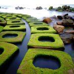 Những điểm chụp hình miễn chê ở Phú Yên