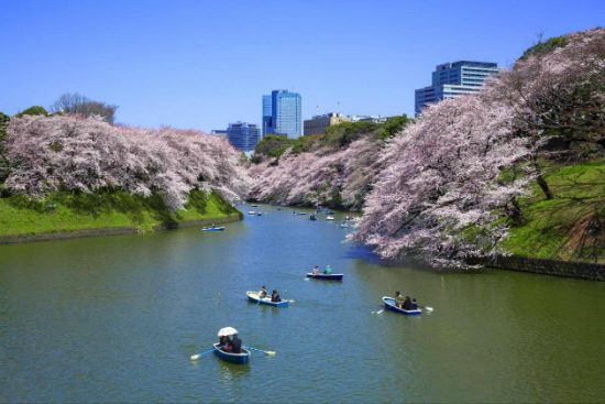 Tour du lịch Tokyo