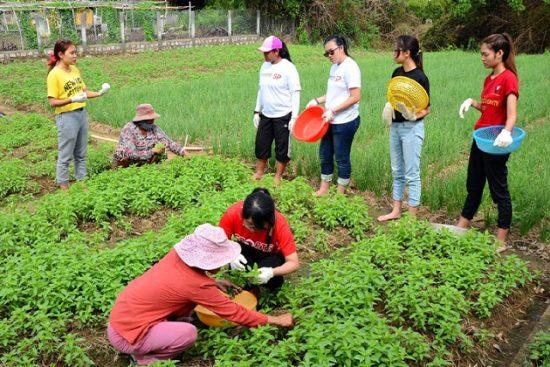 Tour du lịch Phú Yên Tuy Hòa