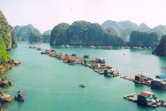 Tour du lịch Vịnh Hạ Long