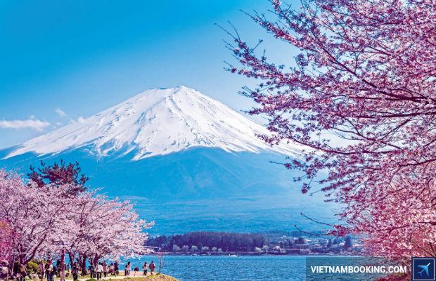 Đặt tour du lịch Nhật Bản 4n3đ giá ưu đãi