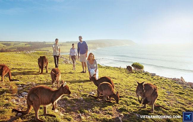 Tour du lịch giá rẻ đi Úc