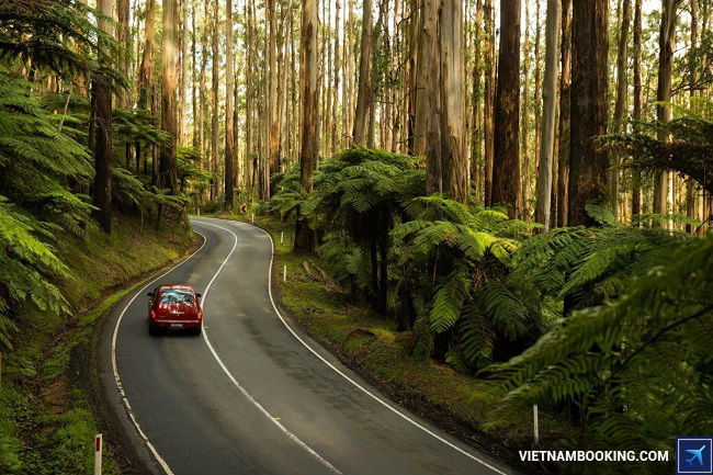 Tour du lịch Úc giá rẻ