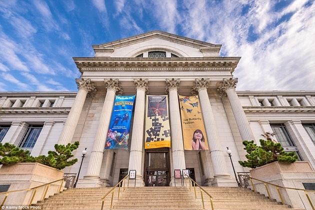 Du lịch Bảo tàng Chicago