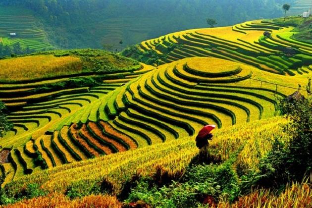 Đặt tour du lịch Điện Biên