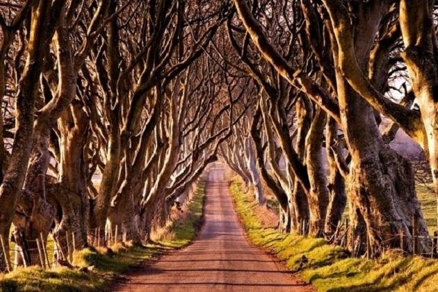 Di lịch Ireland