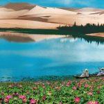 Bàu Trắng – Tiểu sa mạc Sahara trong lòng Phan Thiết