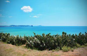 """Du lịch Quy Nhơn – Tuy Hòa """"một hành trình hai điểm đến"""""""