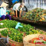 Cần biết gì trước chuyến du lịch Tiền Giang?
