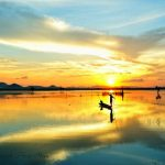 Tour Du Lịch Miền Tây – Phú Quốc 4N3Đ (Hằng ngày)