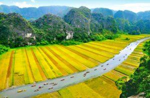 Tour du lịch Hoa Lư – Tam Cốc – Cúc Phương 2 ngày 1 đêm