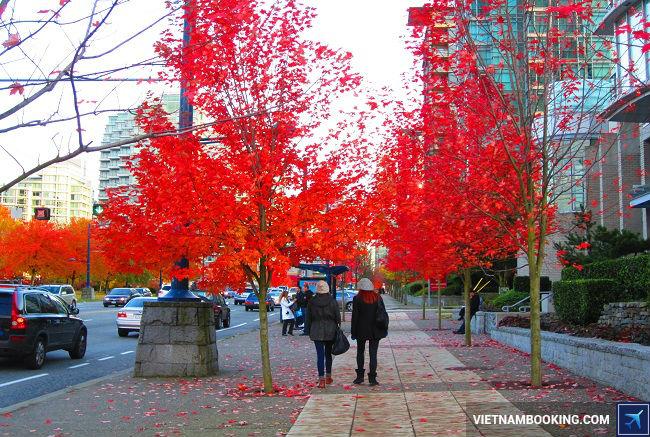 """Vancouver là một trong 3 thành phố cảng lớn nhất Canada và là thành phố có cảnh quan thiên nhiên tuyệt đẹp thu hút hàng trăm ngàn lượt khách du lịch. Bên cạnh đó Vancouver còn là địa điểm lý tưởng của du học sinh với nề giáo dục phát triển hiện đại hàng đầu thế giới. Ngày nay Vancouver luôn được mệnh danh là """"Thành Phố của Thiên Nhiên"""" và là một trong 10 thành phố đáng sống nhất thế giới."""