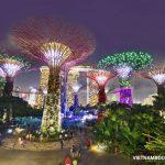 Giá vé máy bay Vietjet Air đi Singapore mới nhất