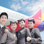 Những thông tin hữu ích vềhãng hàng không Asiana Airlines