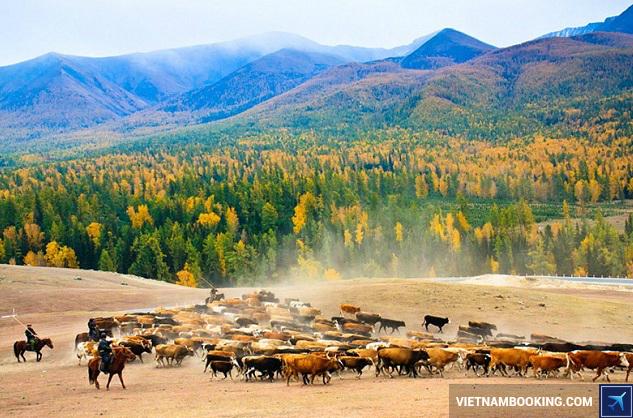 Thiên nhiên Trung Quốc