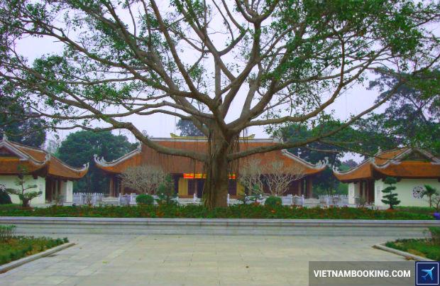 Ve-may-bay-Da-Lat-di-Vinh-gia-re-3-19-6-2017
