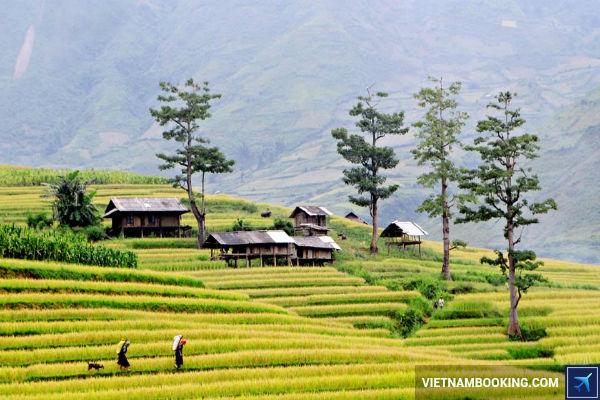 gia-ve-may-bay-Vietnam-Airlines-Ha-Noi-Dien-Bien-24-06-2017-2