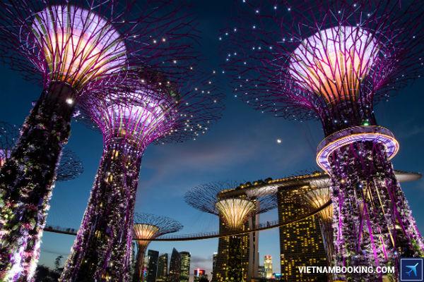 gia-ve-may-bay-tiger-air-di-singapore-moi-nhat-01-06-2017-4