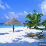 Book ngay vé Vietnam Airlines rẻ đi Phú Quốc!
