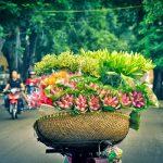 Vé máy bay từ Chu Lai đi Hà Nội