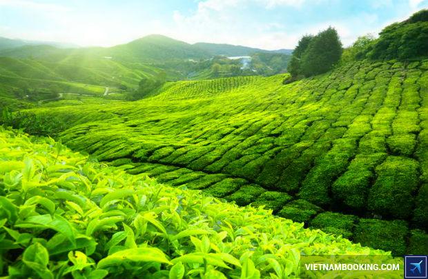 Book-ve-may-bay-tu-Sai-Gon-kham-pha-Malaysia-tuyet-dep-1-3-7-2017