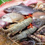 Những món đặc sản ăn là ghiền chỉ có riêng ở Phan Thiết