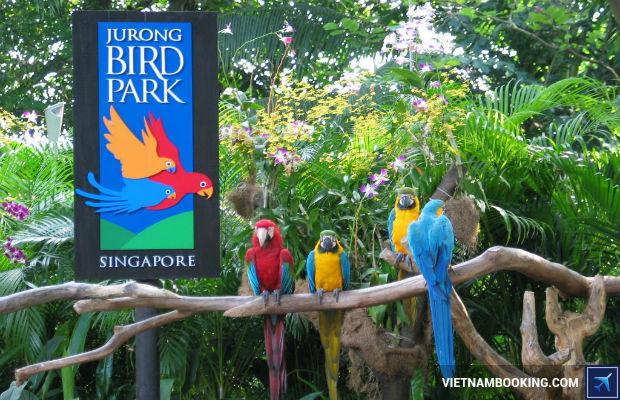 Tour du lich Singapore