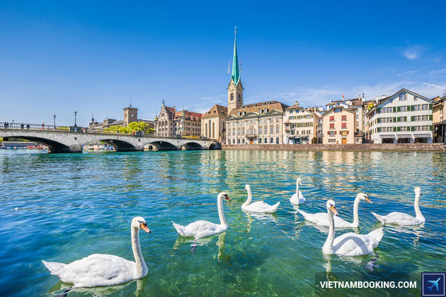 ve may bay gia re di zurich