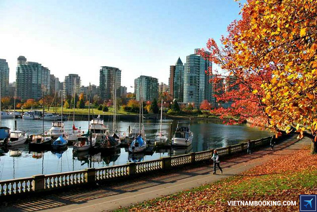 gia ve may bay tphcm vancouver