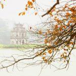 Say đắm trước vẻ đẹp của mùa thu Hà Nội