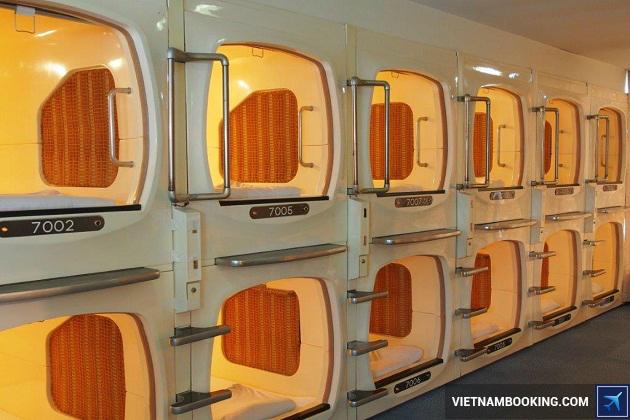 Khách sạn con Nhộng ở Nhật